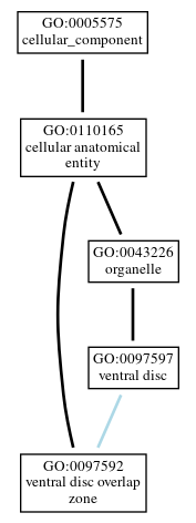 Graph of GO:0097592