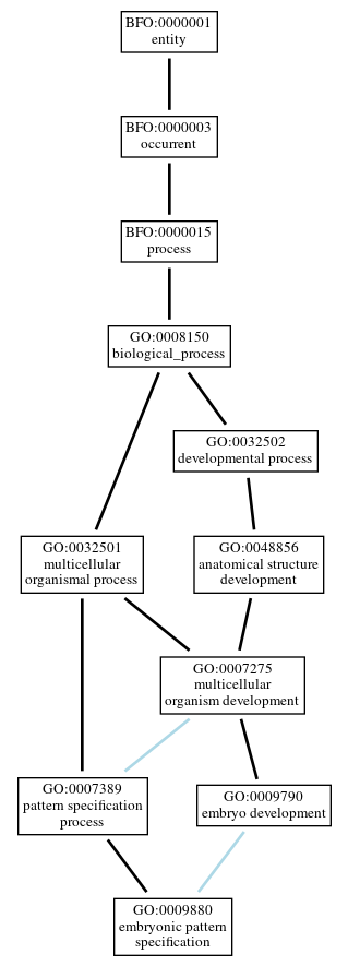 Graph of GO:0009880