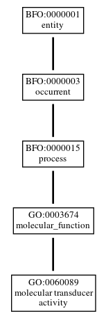 Graph of GO:0060089