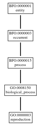 Graph of GO:0000003