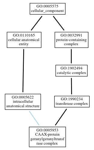 Graph of GO:0005953