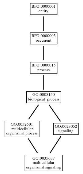Graph of GO:0035637