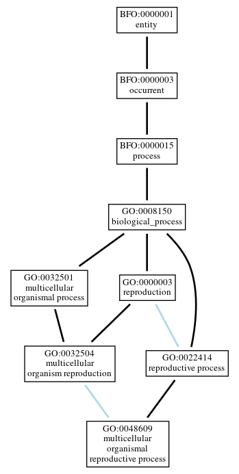 Graph of GO:0048609