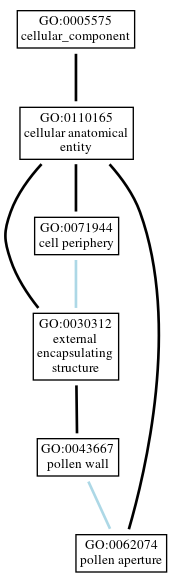 Graph of GO:0062074