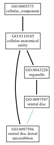 Graph of GO:0097594
