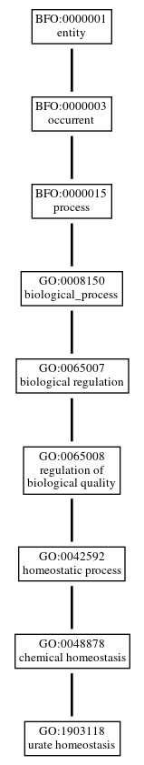 Graph of GO:1903118