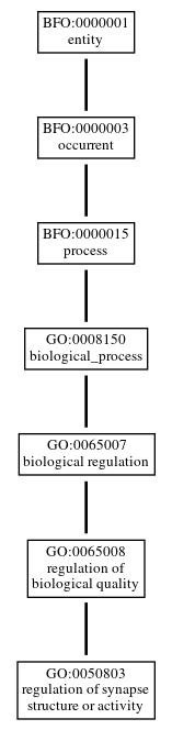 Graph of GO:0050803
