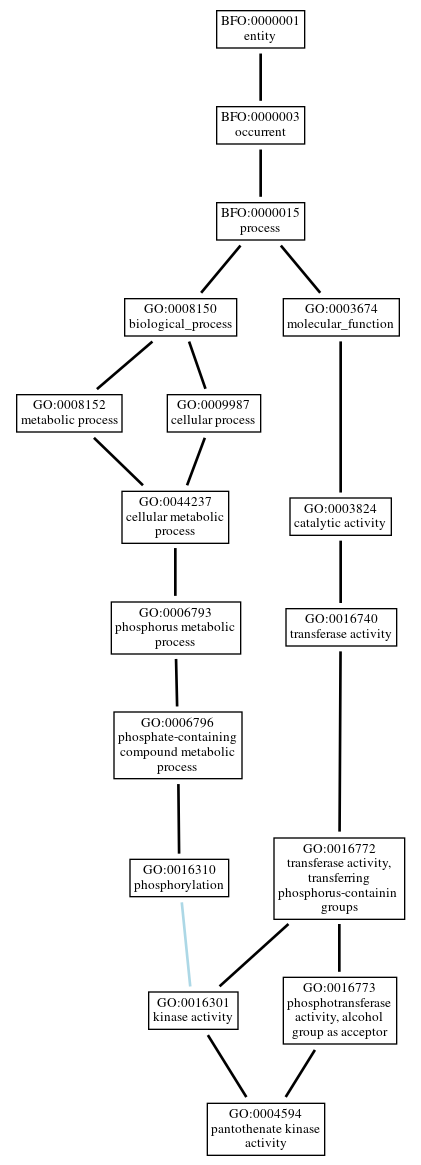 Graph of GO:0004594