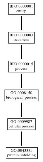 Graph of GO:0043335