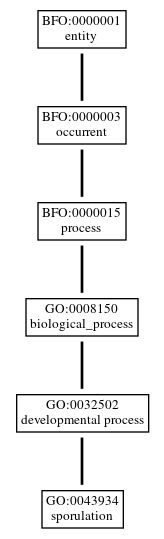 Graph of GO:0043934