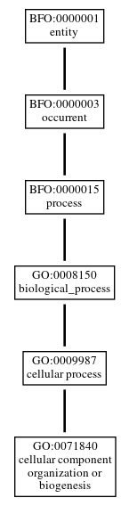 Graph of GO:0071840