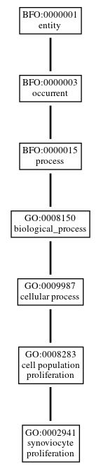 Graph of GO:0002941
