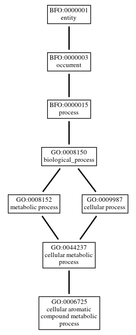 Graph of GO:0006725