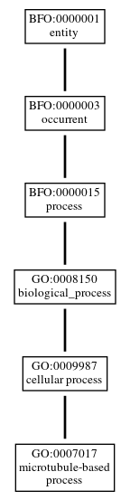 Graph of GO:0007017