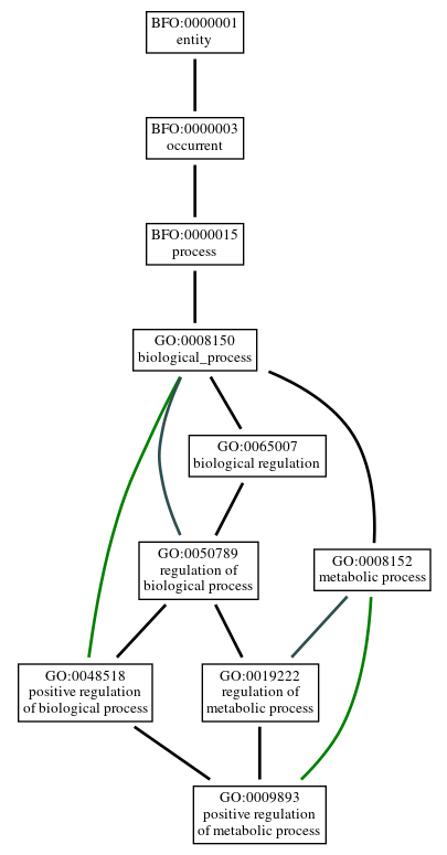 Graph of GO:0009893