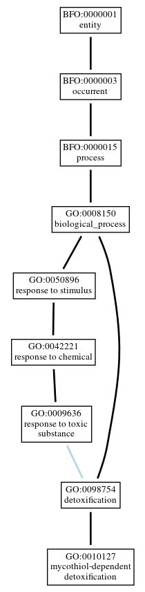 Graph of GO:0010127