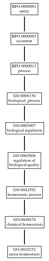 Graph of GO:0010252