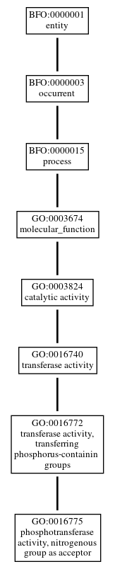 Graph of GO:0016775