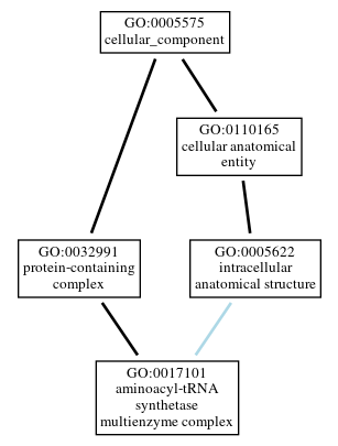 Graph of GO:0017101