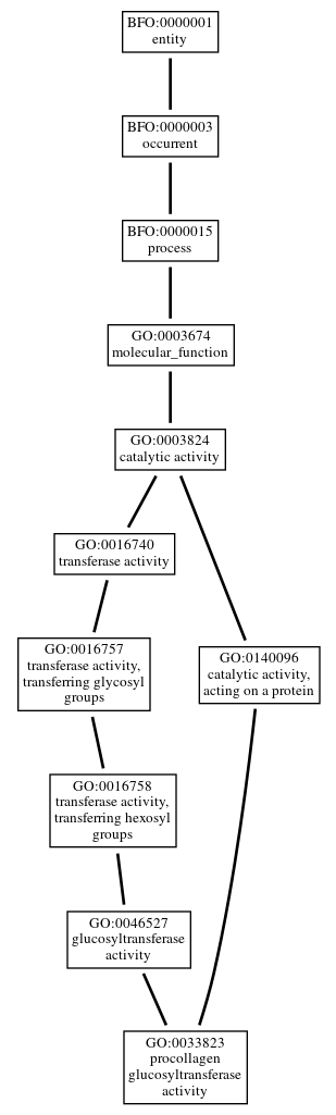 Graph of GO:0033823