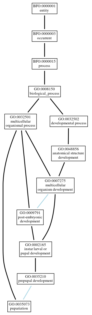 Graph of GO:0035073