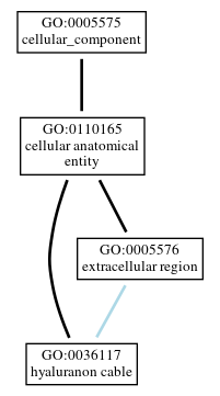 Graph of GO:0036117