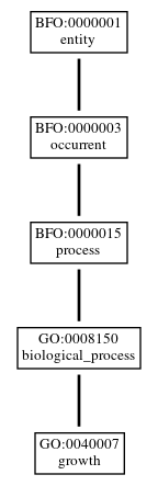 Graph of GO:0040007