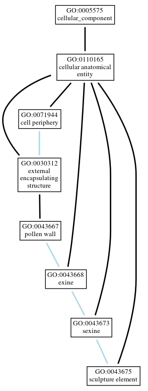 Graph of GO:0043675