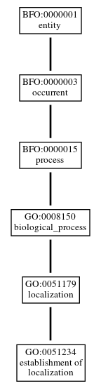 Graph of GO:0051234