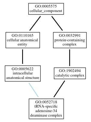 Graph of GO:0052718