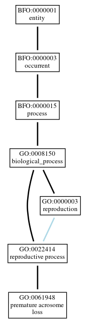 Graph of GO:0061948