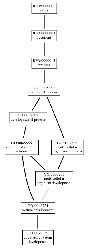 Graph of GO:0072359