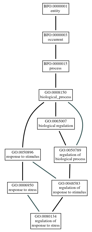 Graph of GO:0080134