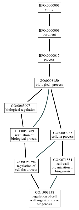 Graph of GO:1903338