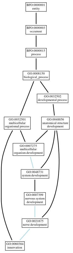 Graph of GO:0060384