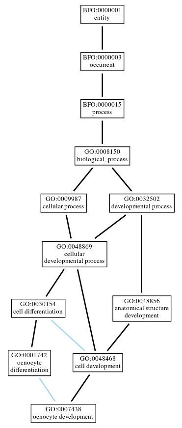 Graph of GO:0007438