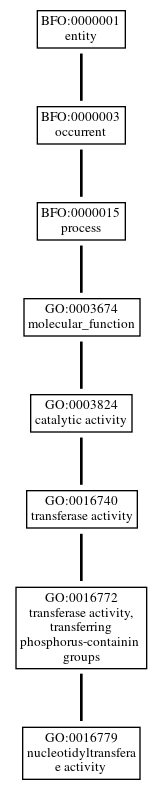 Graph of GO:0016779