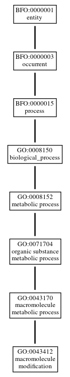 Graph of GO:0043412