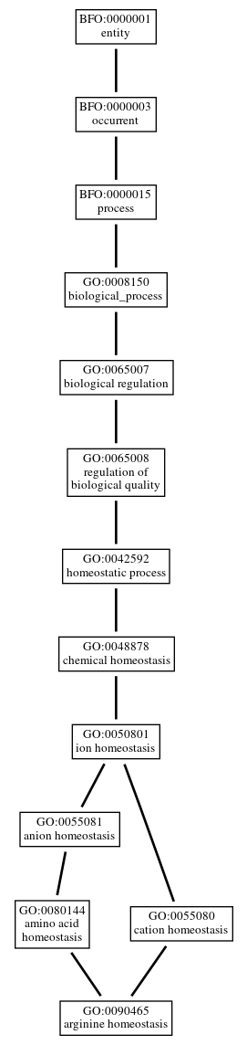 Graph of GO:0090465