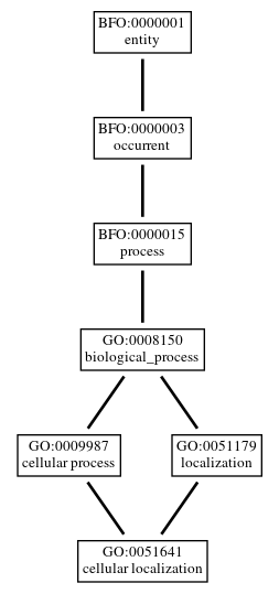 Graph of GO:0051641