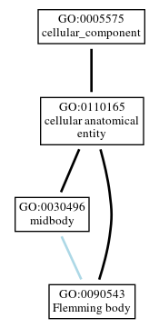 Graph of GO:0090543