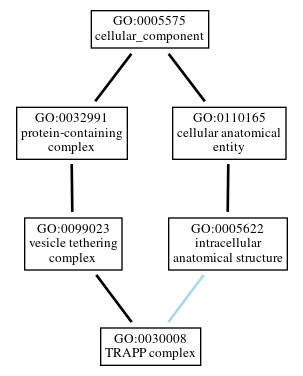 Graph of GO:0030008
