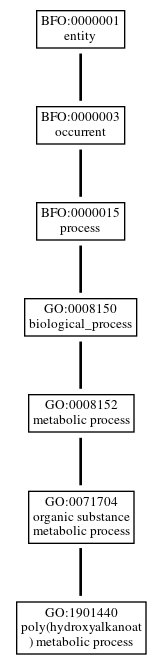 Graph of GO:1901440