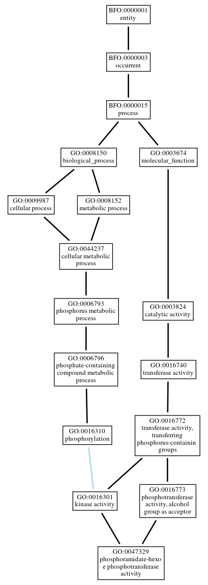 Graph of GO:0047329