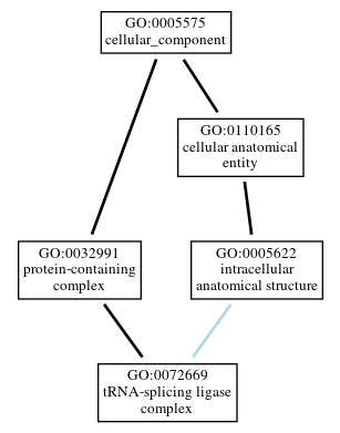 Graph of GO:0072669