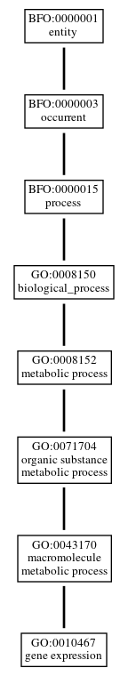 Graph of GO:0010467
