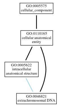 Graph of GO:0046821