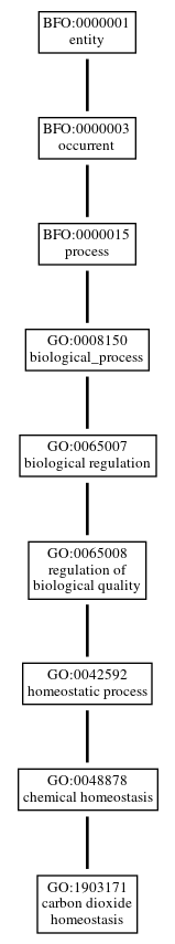 Graph of GO:1903171
