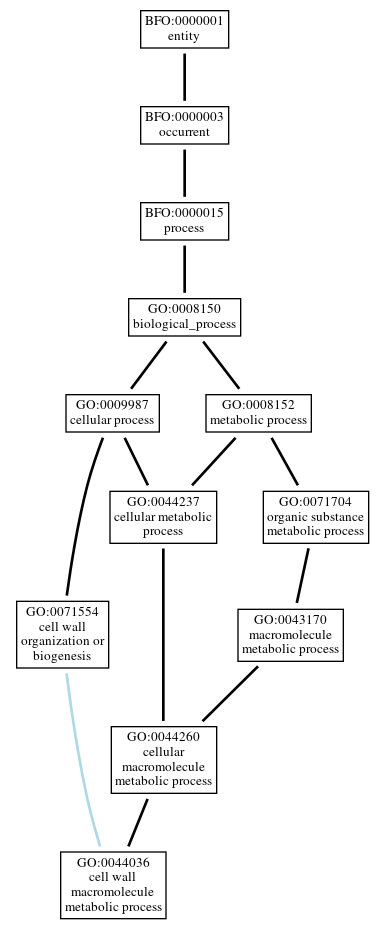Graph of GO:0044036