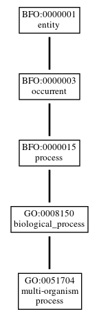 Graph of GO:0051704
